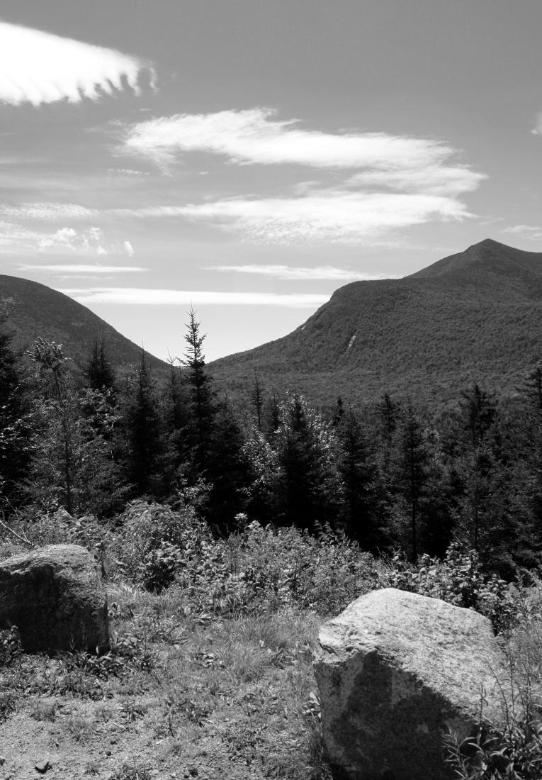 White Mountains 025